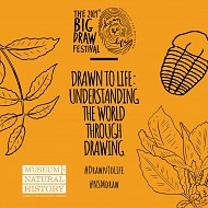 Drawn to Life: Understanding the World through Drawing Graphic