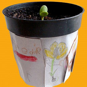 Flower Power! Draw on your plant pot and sow a seed at Rich Mix