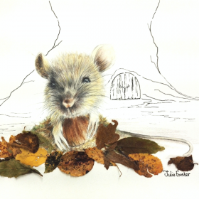 Doormouse - Julie Forster
